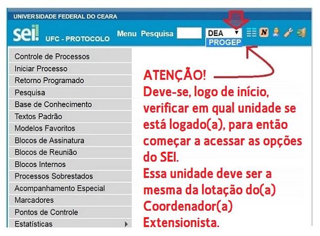 SEI Tela inicial - verificação da sigla da unidade